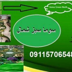کاشت و نگهداری فضای سبز آمل