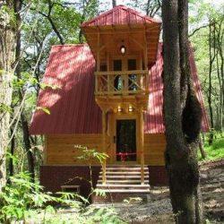 کلبه چوبی در جنگل