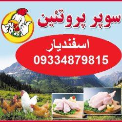 سوپر پروتئین و فروش مرغ و ماهی
